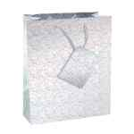 Image for Holographic Gift Bags Size 5 Bottle Assorted (Pack of 12) C304