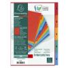 Exacompta Europa Coloured Pressboard Index 1-5 A4 3110Z
