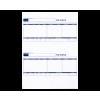 Sage Comp Standard Payslip BX1000