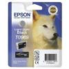 Epson R2880 Light Light Black Ink
