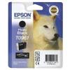 Epson R2880 Photo Black