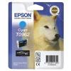 Epson R2880 Cyan Ink