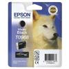 Epson R2880 Matte Black Ink