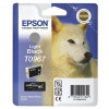 Epson R2880 Light Black Ink