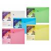 Snopake Polyfile Wallet File A3 Classic Astd PK5