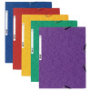 Europa Assorted Portfolio Files Pack of 10 55515E