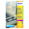 Avery Laser Label Heavy Duty Silver 27x20 Sheets (Pack of 540) L6011-20