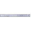 Linex Heavy Duty Ruler 100cm Stainless Steel LXESL100