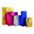 Holographic Bottle Gift Bag (Pack of 12) FUNK4