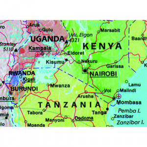 Terrain World Map.388289 Map Marketing World Map 3d Effect Giant Unframed 315