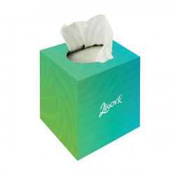 2Work Facial Tissues Cube 70 Sheets (Pack of 24) FTW070