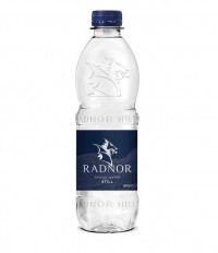 Radnor Hills Bottled Water 500ml (Pack 24)