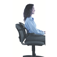Fellowes Office Suites Mesh Back Support Black 8036501