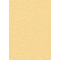 Decadry Parchment A4 Letterhead Paper 95gsm Gold (Pack of 100) PCL1600