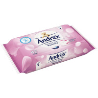 Andrex Gentle Clean Washlets 42 Per Pack (Pack of 12) 4512178